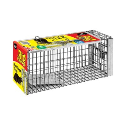 Picture of Rat Cage Trap