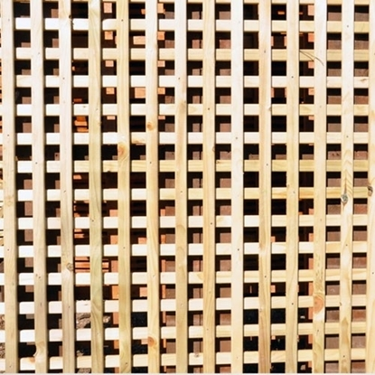 Picture of Screen Trellis 1.83m x 1.83m. Pressure-Treated