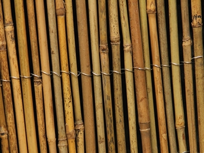 Picture of Bamboo Screening 2m high x 4m long